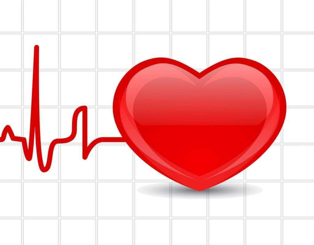 Чем отличается экг от эхо кг сердца